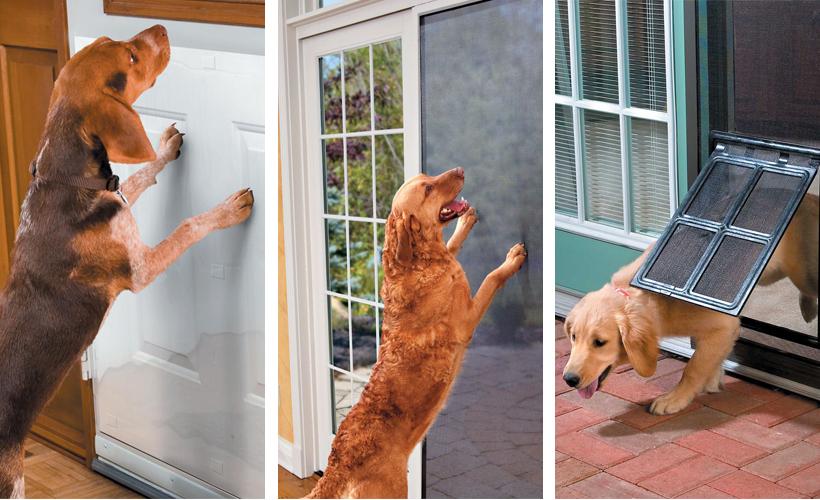 Marvelous ... Screen Door Protectors For Dogs Gallery Doors Design Modern ...
