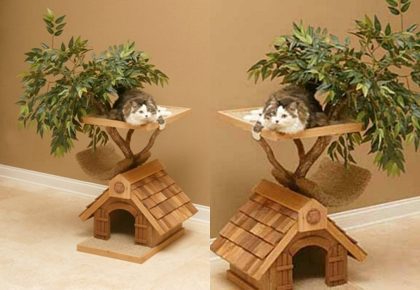 THE REASON THAT EXPLAINS CLEARLY WHY YOUR CAT NEEDS A CAT TREE